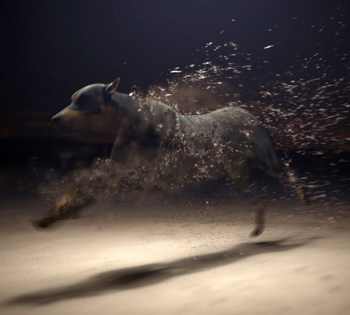 Dog FX Particles